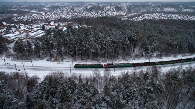 Японский журналист раскритиковал природу Сибири
