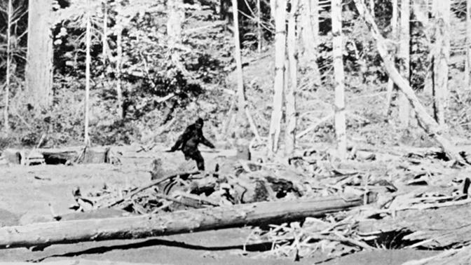 «По следам йети»: ученый рассказал, как ловили снежного человека в СССР