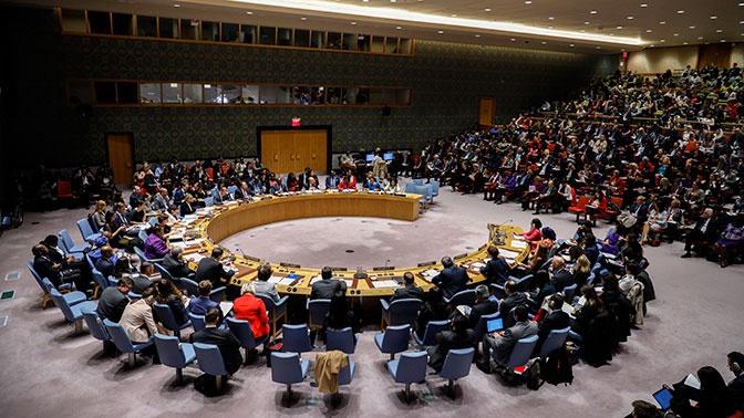 Украинская делегация сорвала доклад России в ООН