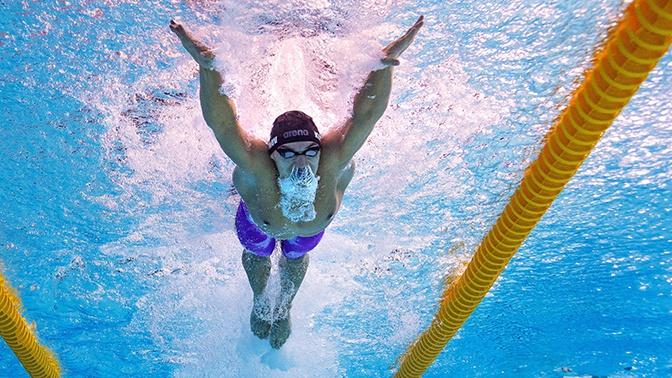 Российские пловцы заняли первое место в общекомандном зачете на чемпионате Европы