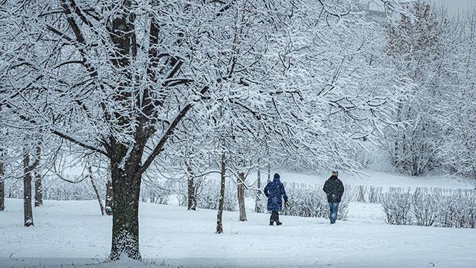 Погода в доме: россиян ждет аномально теплый февраль