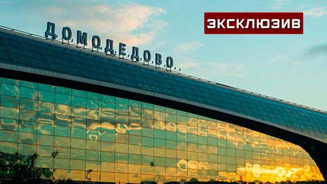 «Вела себя тихо»: пассажирка «заминированного» лайнера раскрыла детали ЧП в Домодедово