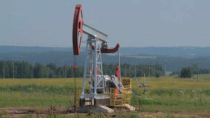 Трамп: США, Россия и Саудовская Аравия обсудят вопрос цены на нефть