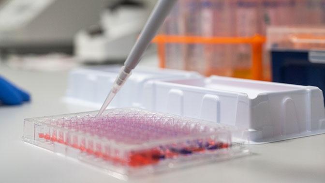 В Минобороны России рассказали об участии в создании вакцины от коронавируса