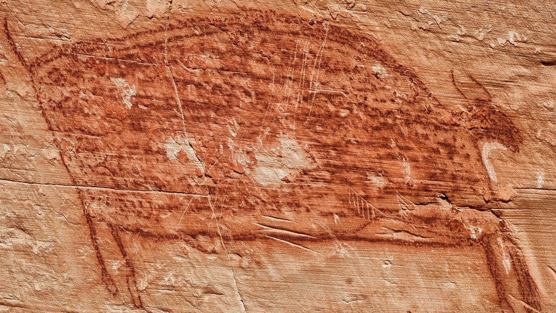В Египте найдена пещера с уникальными наскальными рисунками