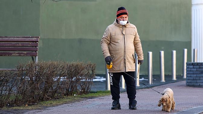 Рука помощи: как волонтеры и кинологи помогают пожилым москвичам в уходе за домашними животными
