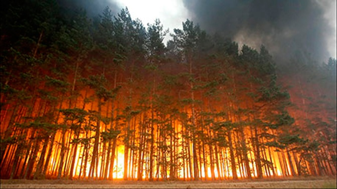 Эксперты спрогнозировали торфяные пожары в центральной части России