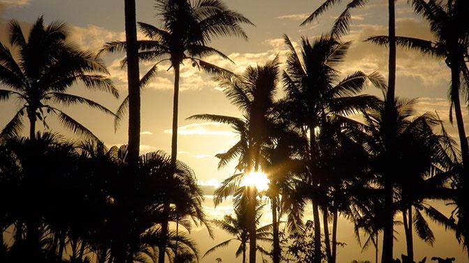 Долгий путь домой: Захарова рассказала о  возвращении россиян с Фиджи