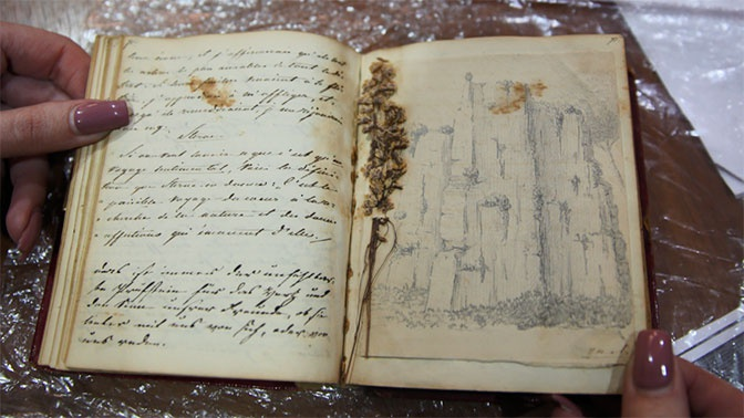 «Кража века»: в Сочи расследуют кражу неизвестного дневника Пушкина