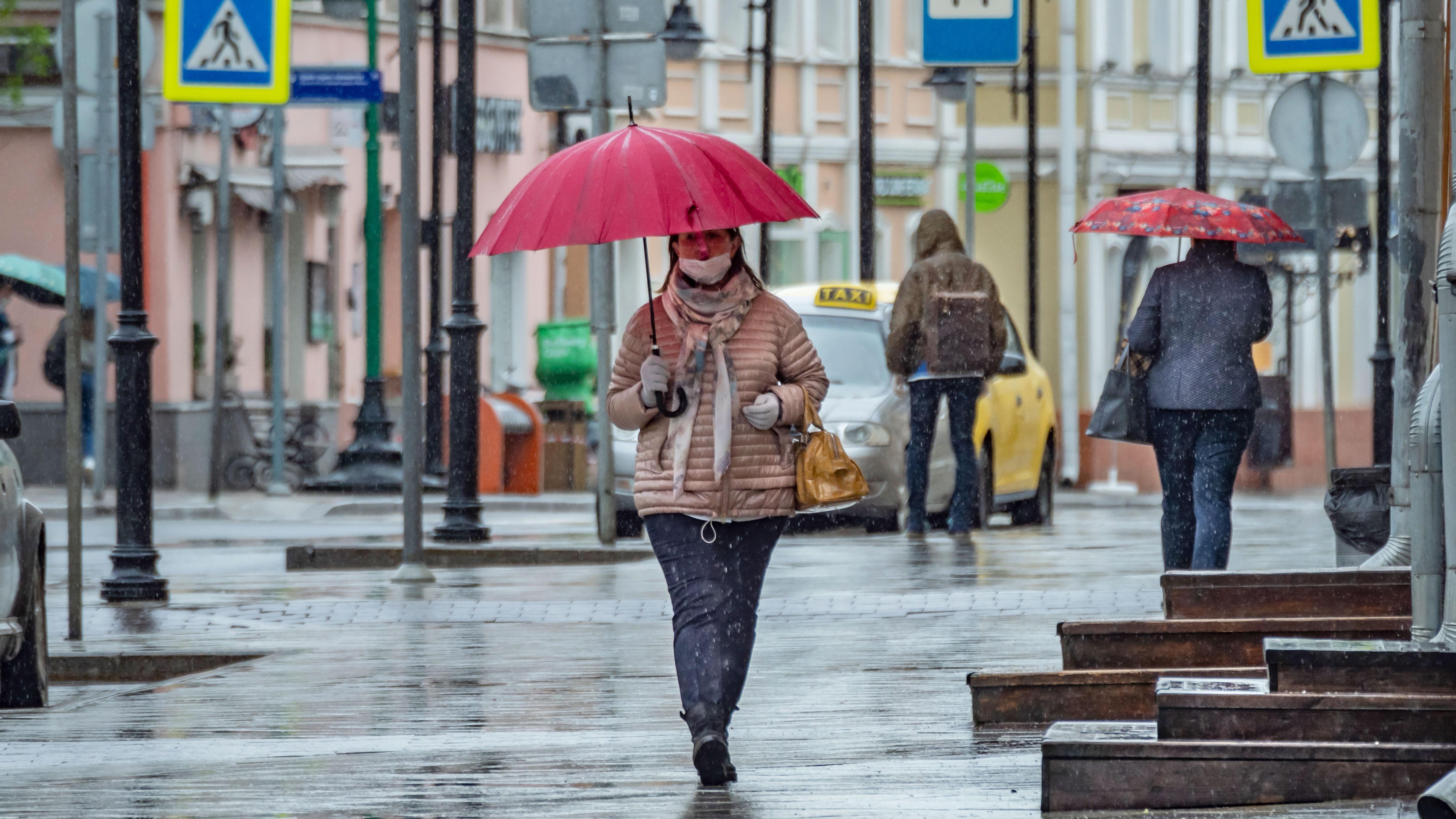 Синоптики рассказали о грядущем потеплении в Москве