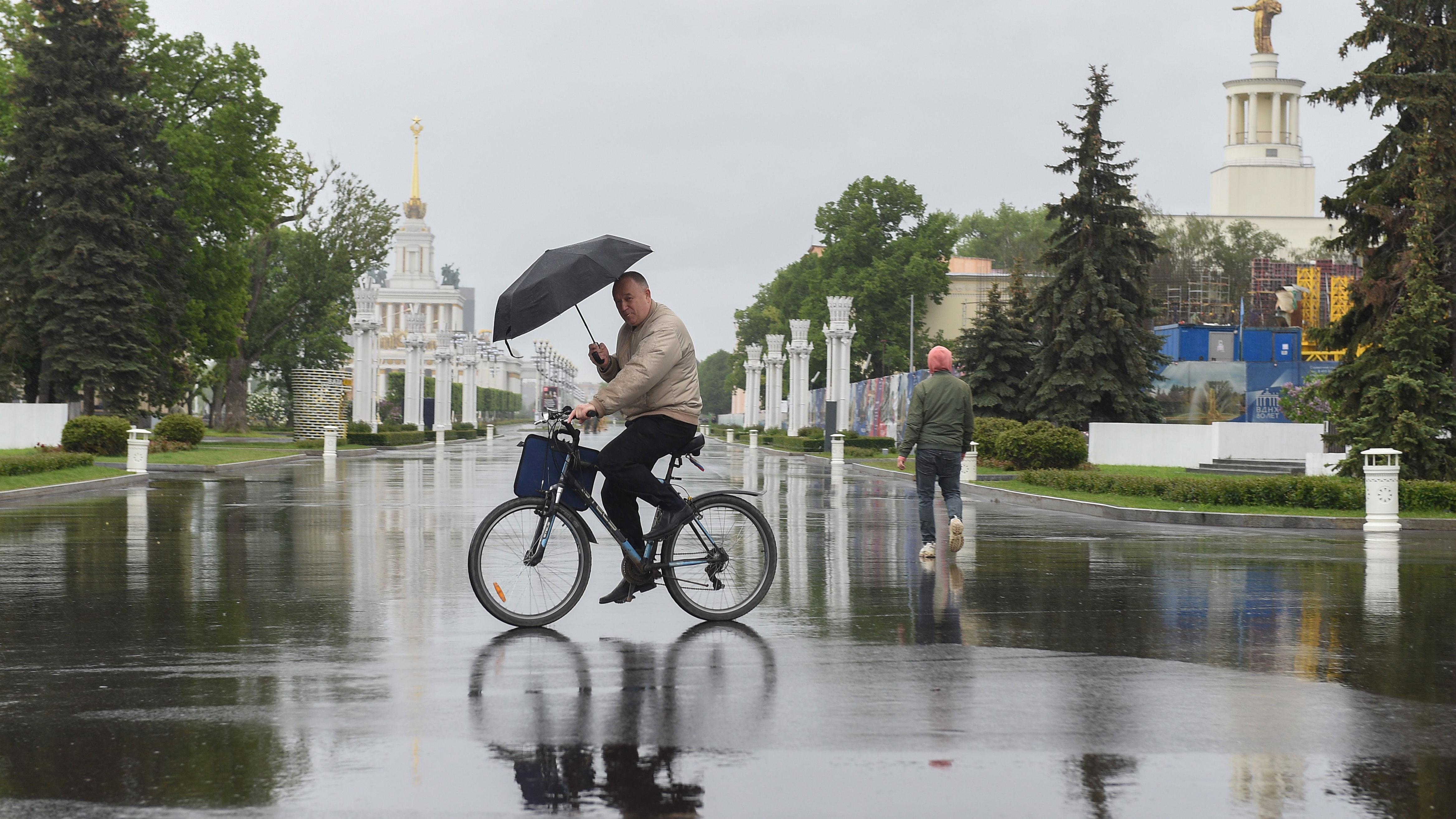 Тепло и грозы: синоптики рассказали о погоде в Москве на 5 июня