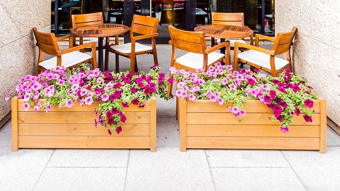 Веранды кафе и ресторанов в Подмосковье откроются с 12 июня