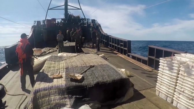 Четыре года колонии: браконьер из КНДР получил срок за нападение на приморских пограничников