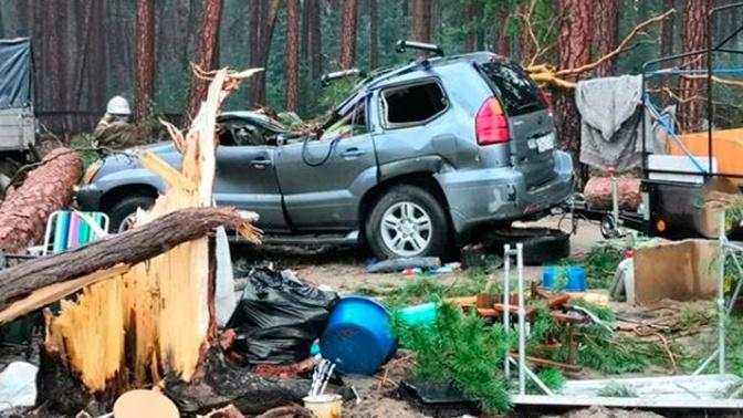 Искореженные машины и поваленные деревья: опубликованы первые кадры последствий урагана под Красноярском