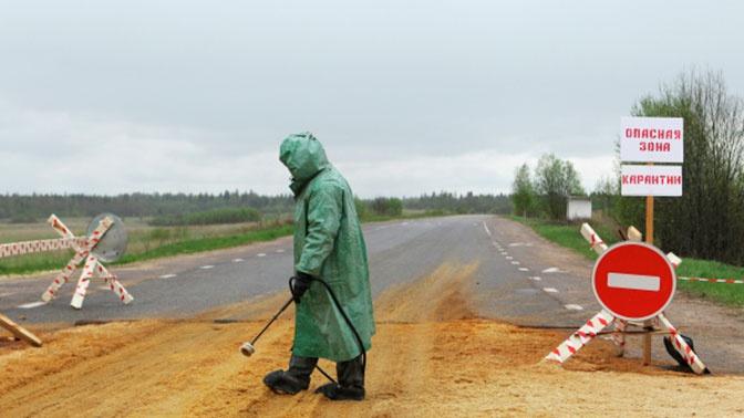 В МИД РФ оценили риск распространения бубонной чумы из Монголии и КНР