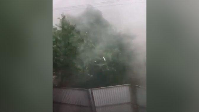 Сорвало крыши и повалило деревья: кадры мощного урагана на Кубани