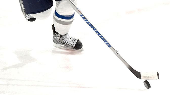 Названа предварительная дата возобновления сезона в NHL