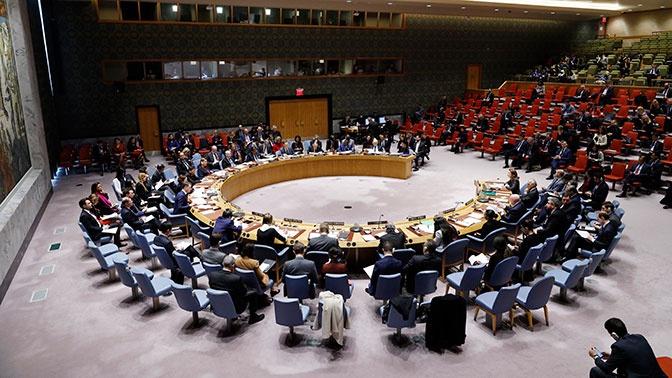 СБ ООН принял резолюцию Бельгии и Германии по продлению работы одного КПП для доставки гумпомощи в Сирию