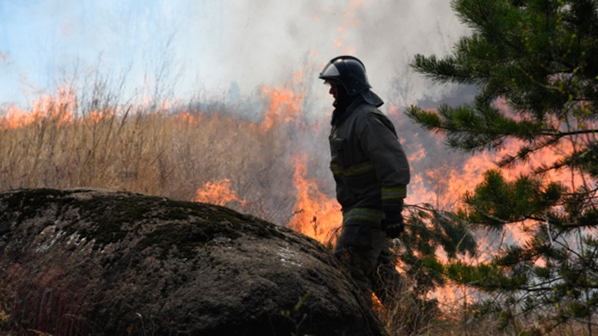 На Чукотке потушили все лесные пожары