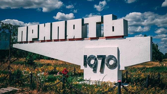 В Чернобыле нашли грибы, способные «поедать» радиацию