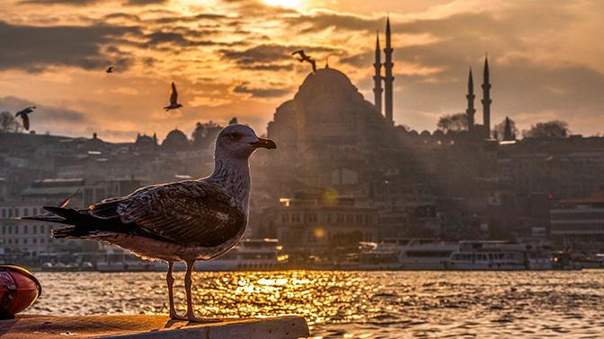 Три главных правила: раскрыты особенности отдыха в Турции