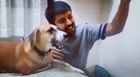 Пользователей Сети поразила «поющая» собака