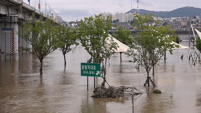 Смертельные ливни: более 30 человек погибли в Южной Корее из-за непогоды
