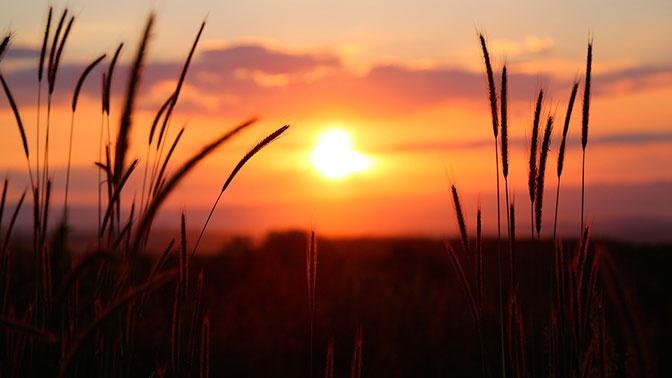 В Гидрометцентре спрогнозировали потепление в Центральной России