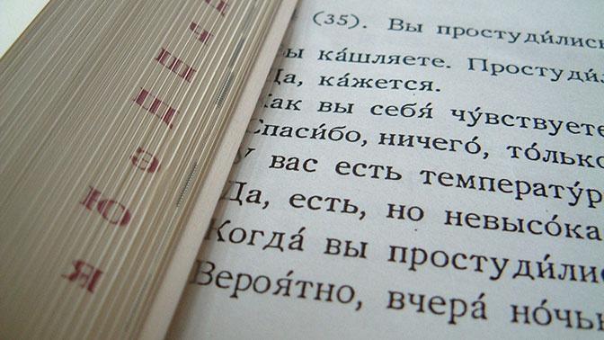 Фурсенко призвал действовать аккуратно при пересмотре норм русского языка