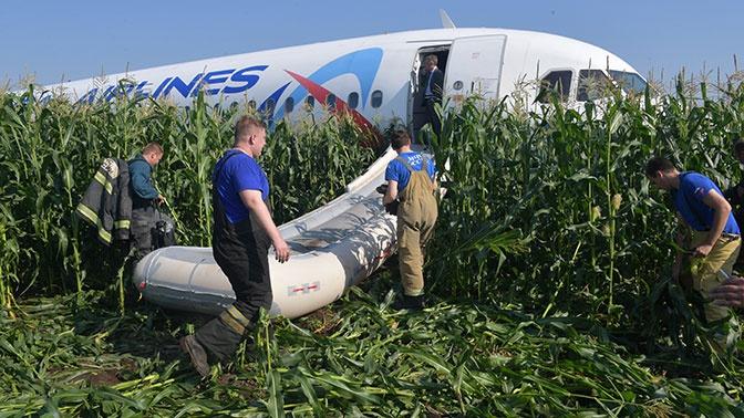 «Мы остались семьей»: Стюардесса лайнера, севшего на кукурузное поле, поздравила коллег с «днем рождения»