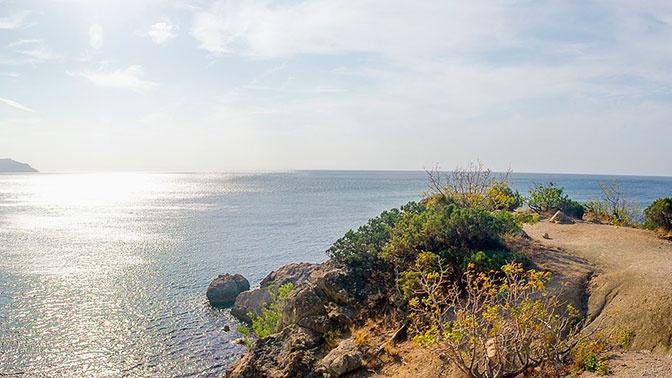 Шойгу: в Черном море стали чаще появляться военные корабли иностранных держав