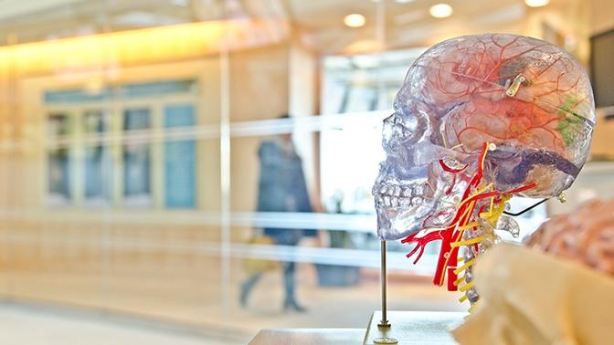 Назван признак быстрорастущей формы рака мозга