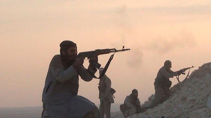 В Сирии террористы обстреляли населенный пункт в провинции Алеппо
