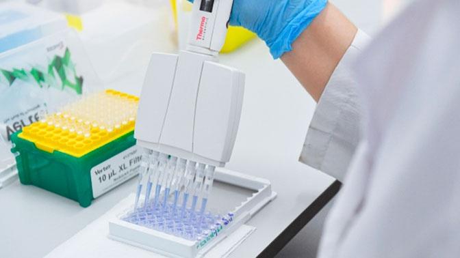 Испытания вакцины от коронавируса «Спутник V» начались в Белоруссии