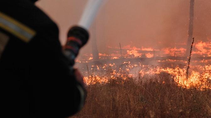 Губернатор Воронежской области предупредил об опасности пожаров в регионе