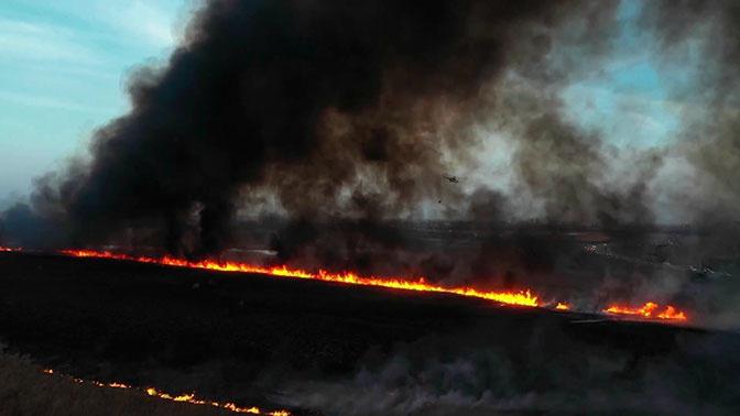 В Ростовской и Воронежской областях увеличивается площадь природных пожаров