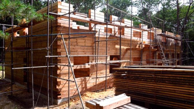 Путин поручил распространить ипотеку на строительство домов из дерева до 1 июля