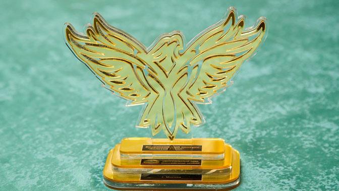 Объявлены имена лауреатов Всероссийского конкурса «Золотой сокол - 2020»