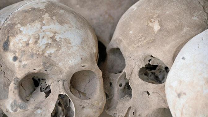 В Нидерландах обнаружили таинственную братскую могилу