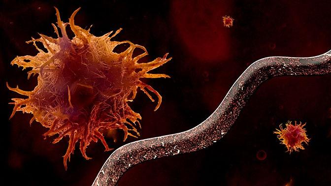 Ученые превратили вирус-невидимку в оружие против рака