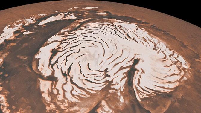 Веганам закрыли путь на Марс