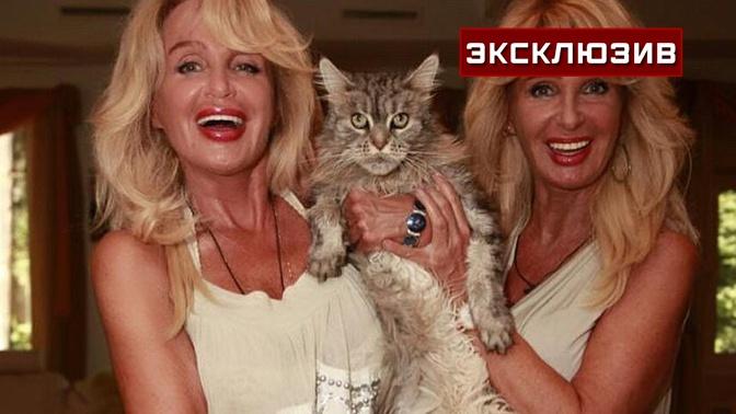 «Просто умертвили кота»: певицы сестры Зайцевы обвинили в смерти питомца элитную клинику