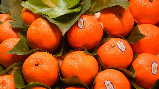 Названа безопасная суточная норма мандаринов