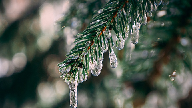 В центральной России пройдут ледяные дожди