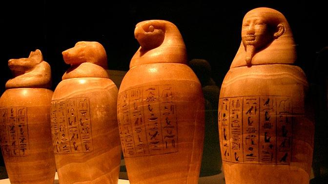Древнеегипетские мумии помогли в поисках таинственной земли Пунт