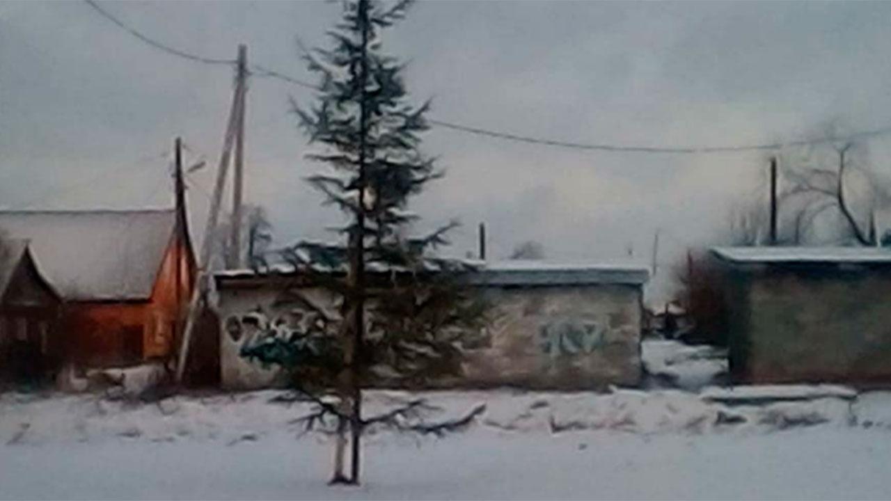 «Какой год, такая и елка»: на Урале местные жители раскритиковали «лысое» новогоднее дерево
