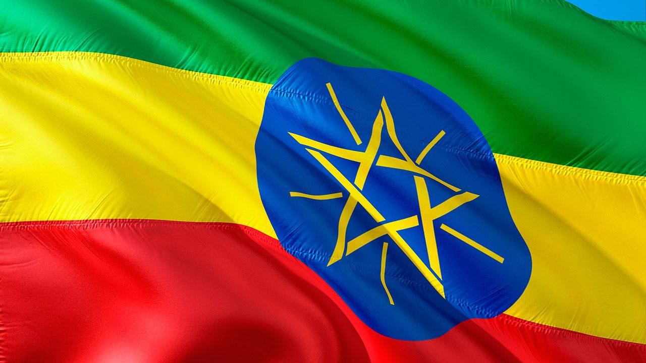 СМИ: 222 человека стали жертвами межэтнического конфликта в Эфиопии