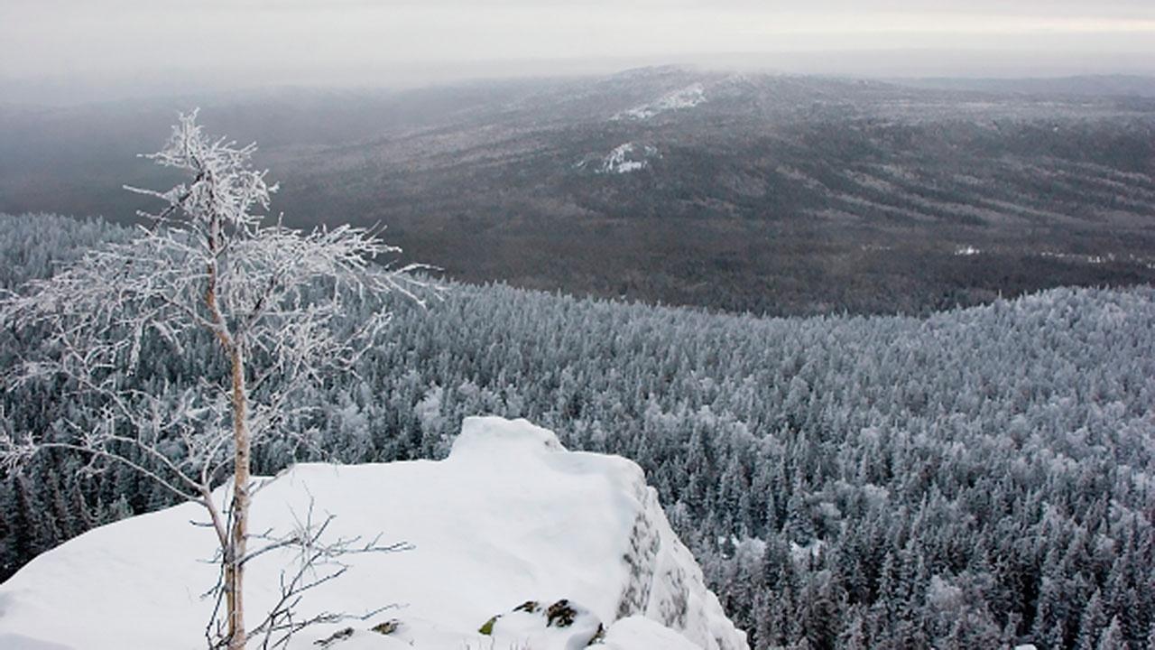 Спасатели нашли пропавшую группу туристов в горах на Урале