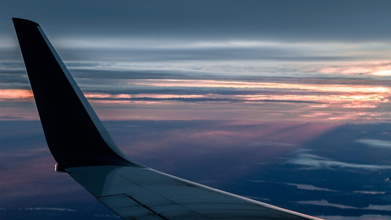 Рейс «Минводы - Сургут» задержан из-за попадания птицы в самолет