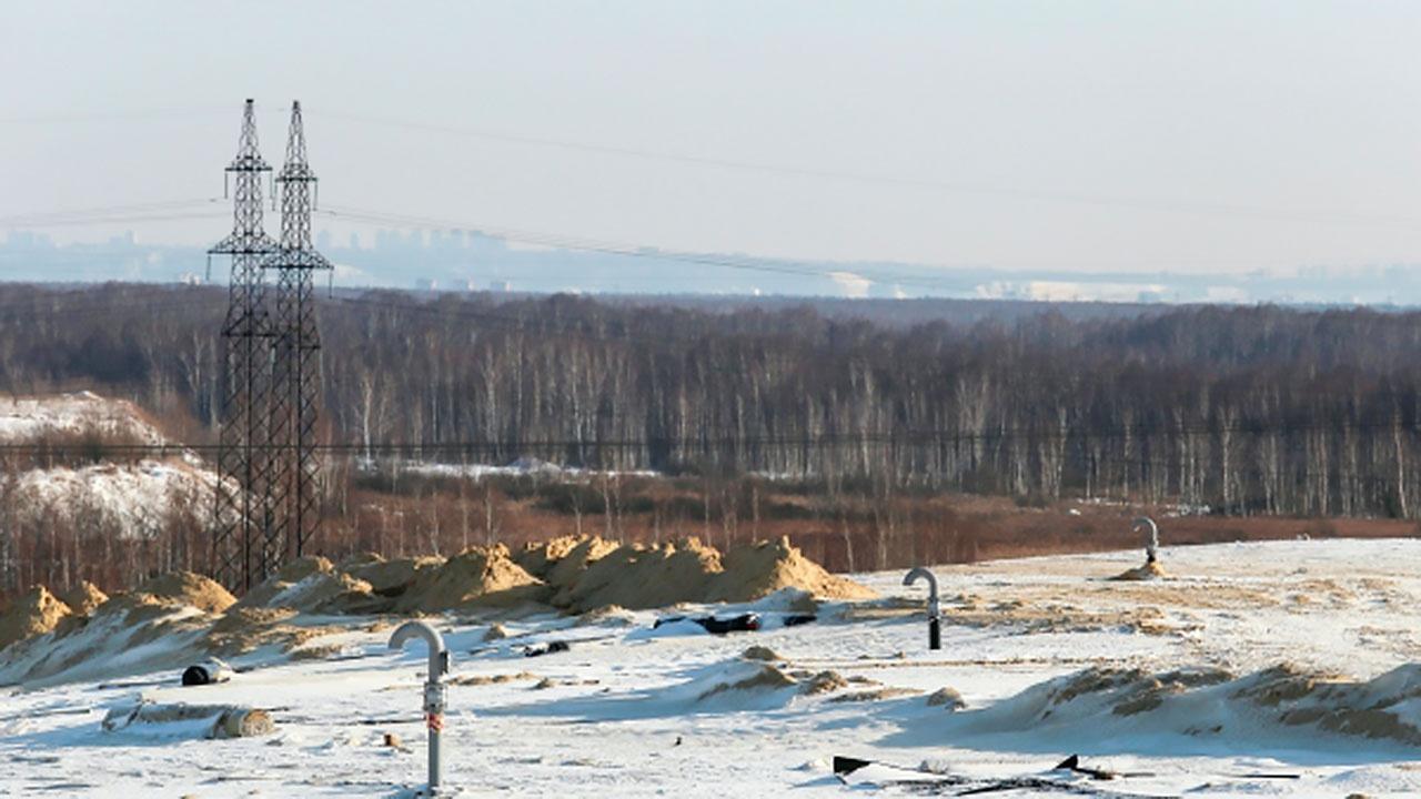 В России вступил запрет на свалку отходов в лесах и возле ЛЭП